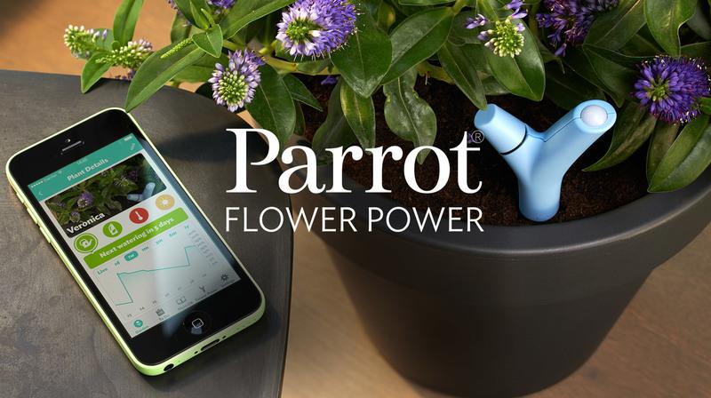 10_smart_home_flower_buzznfun.com