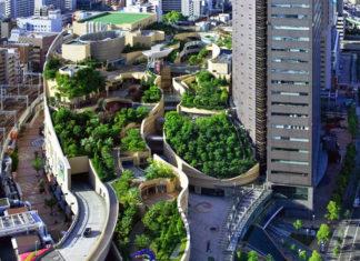 roof-garden-japan